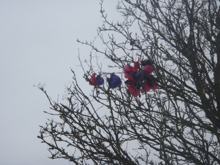 Balloons in DEAD tree