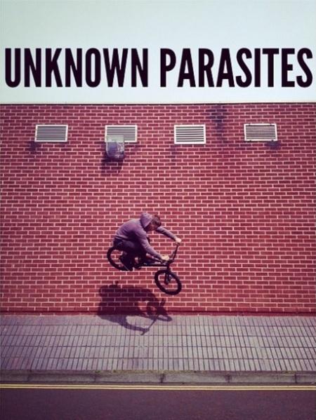 Unknown Parasites Tim Evans Gateshead UK
